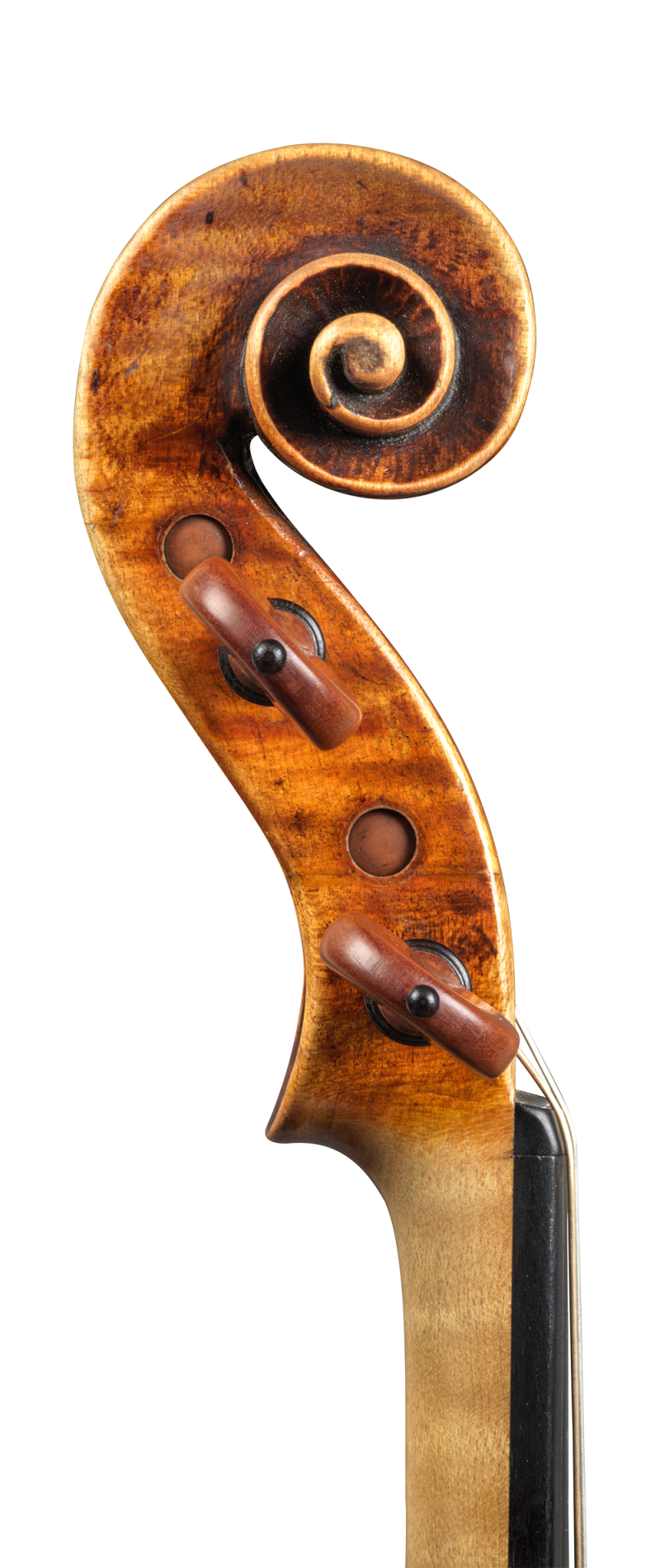 Scroll of a violin by Pietro Guarneri of Venice, 1751, Ex-Benedetti. It was the concert instrument of the renowned violinist Nicola Benedetti, and it was on this violin that she won the BBC Young Musician of The Year in 2004.