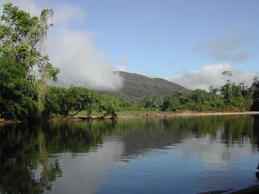 Nangaritza, one of the habitats protected through WLT's Carbon Balanced programme that Ingles and Hayday have support