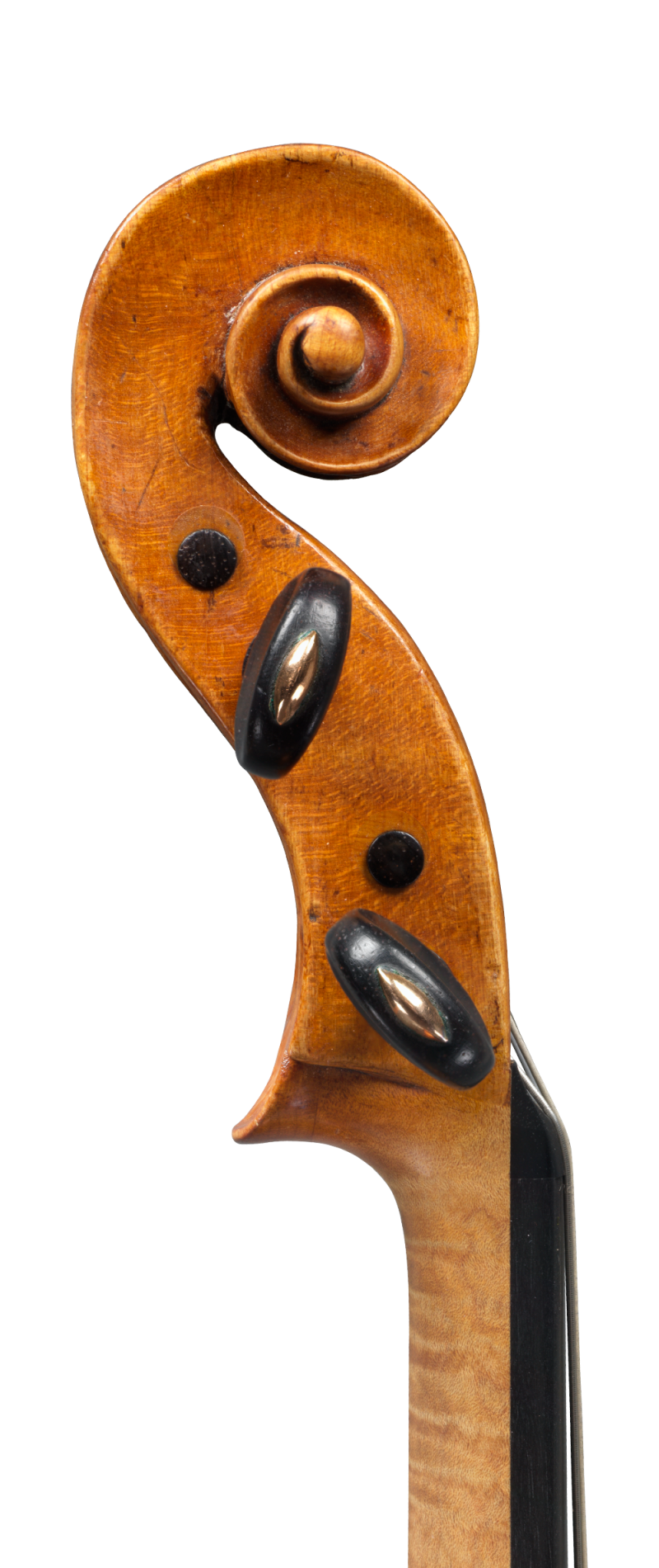 Scroll of a colourful and articulate sounding viola by little know Piattellini to be sold at Ingles & Hayday. Made circa 1760