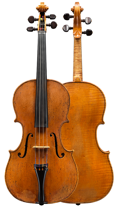 Composite view of a colourful and articulate sounding viola by little know Piattellini to be sold at Ingles & Hayday. Made circa 1760