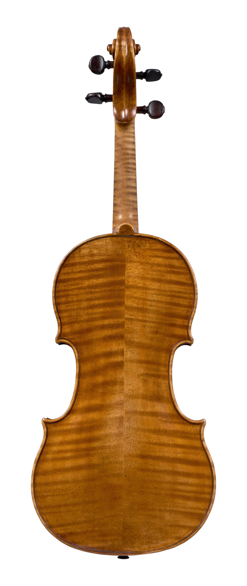 Back of a violin by Antonio Gragnani, 1776. This violin is a very representative example of the maker's output, with a beautiful and piercing tone which is colourful and carries well in all registers.