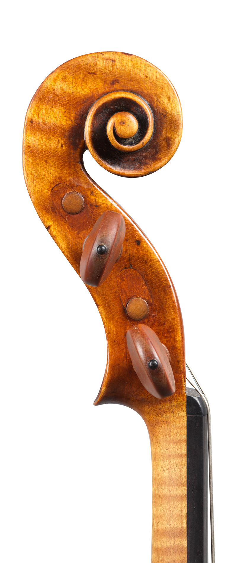 Scroll of a rare violin by Carlo Rugeri, circa 1710. The model used for this instrument is particularly delicate and elegant, and its sound is refined.