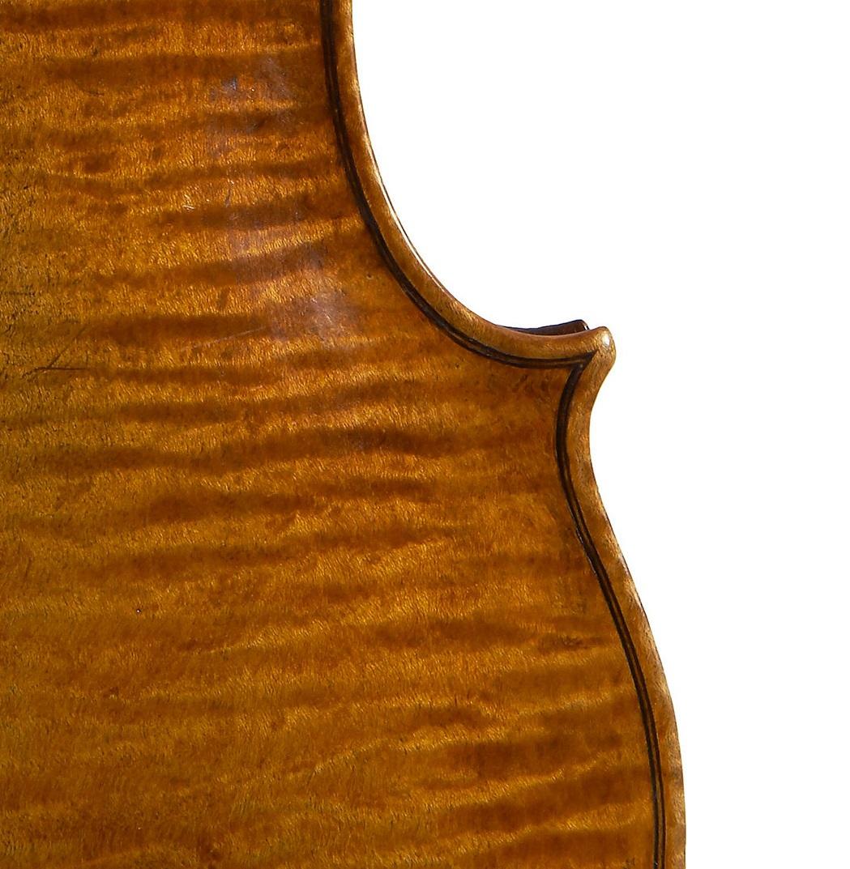Back of a violin by Francesco Rugeri, Cremona, 1685
