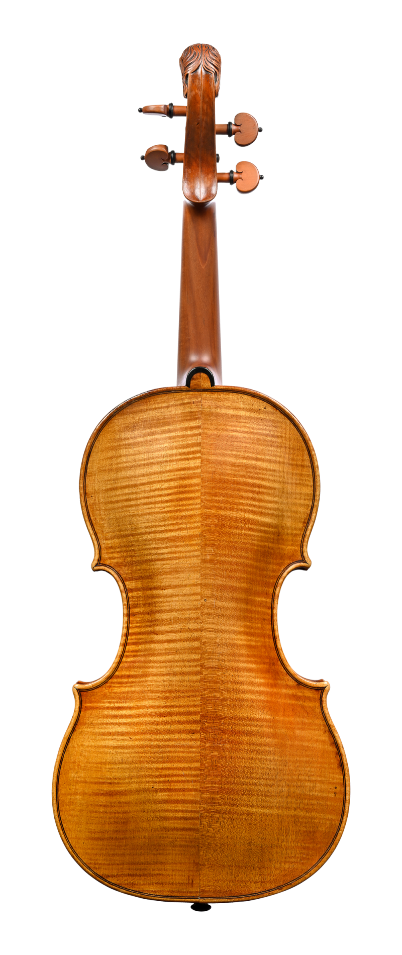Back of a violin by Jacob Stainer, Absam, 1669