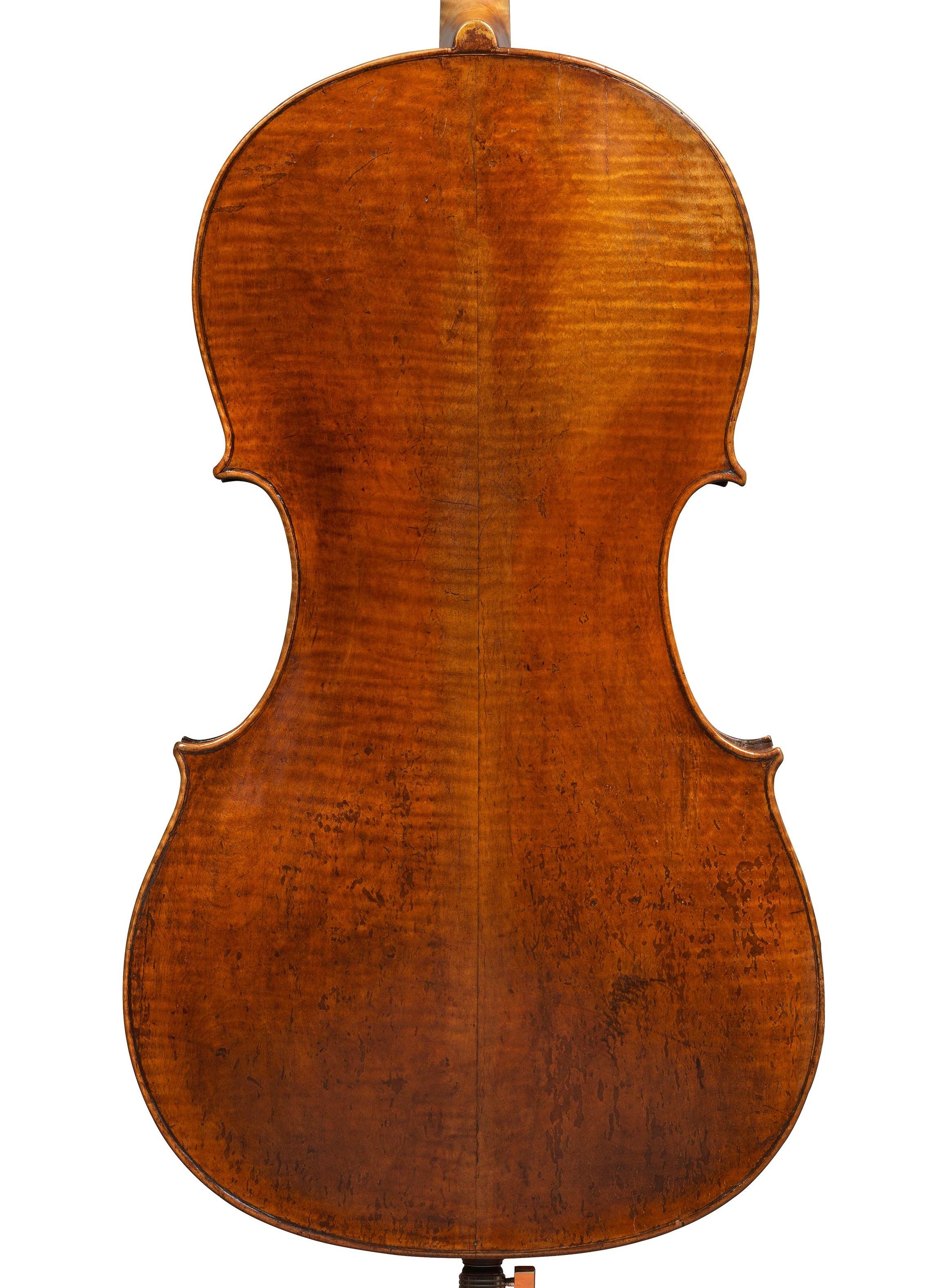 Back of a cello by Giuseppe filius Andreae, Cremona, 1713